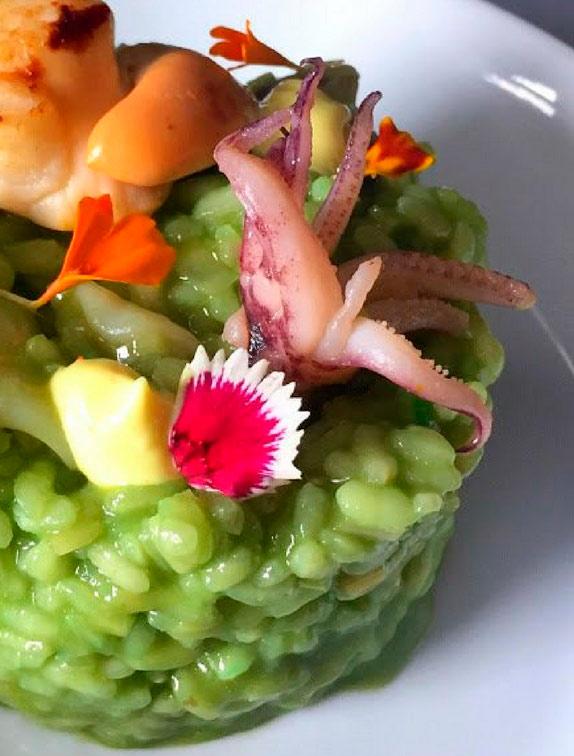 plancton azafran gourmet
