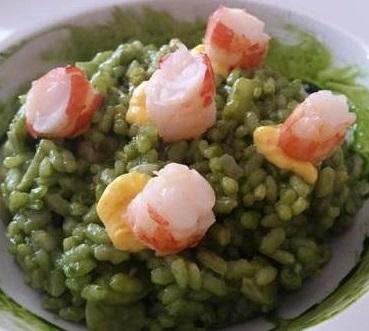 receta de arroz con plancton