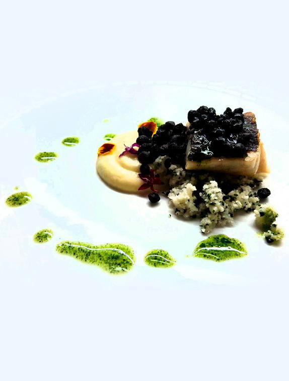 receta plancton marino
