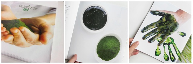 Libro plancton marino