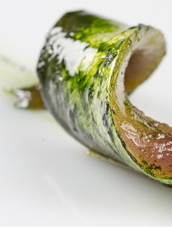 tecnica de marinado
